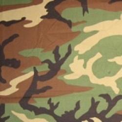 Varianta US Woodland