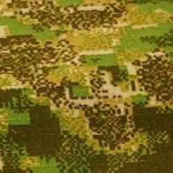 Varianta GreenZone